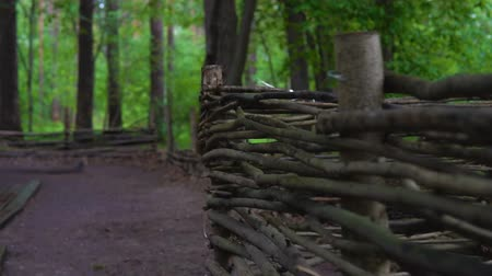 proutěný : An old wicker fence in a dark and damp forest. Slow motion.