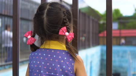 know : A little girl looks through the metal bars of the cage in the zoo.
