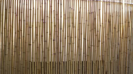 caseiro : A window curtain made of bamboo through which the rays of light break through.