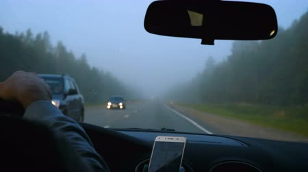 маркировка : The car moves on a forest foggy road. Towards him moving other cars. View from inside the car.