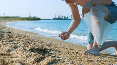 coletando : A young man collects shells in a plastic bag on the beach near the city port. Vídeos