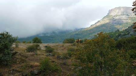 arborizado : A young woman rides a horse through the mountains shrouded in mystic clouds. Vídeos