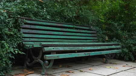 распад : Old bench with peeling paint in a natural park in the fall.