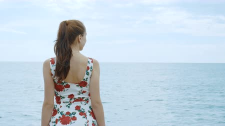 námořník : A beautiful young pretty girl in a dress is standing on the pier of the seaport, looking into the distance and waiting for the ship. In the background, a calm sea and a cloudy blue sky. Dostupné videozáznamy
