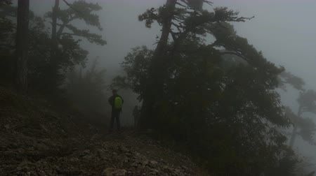 homály : Tourists with backpacks go down the mountain slope through the gloomy foggy forest. Twilight time.