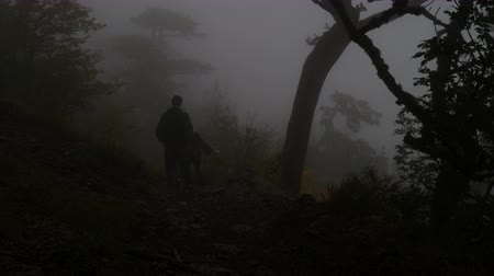 geheimnisvoll : Tourists with backpacks go down the mountain slope through the gloomy foggy forest. Twilight time.