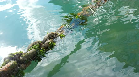 sea port : Old rusty ship chain overgrown with algae in sea water.