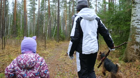 airedale : Mom and her little daughter are walking the dog in the damp autumn forest. Dog breed Airedale Terrier.