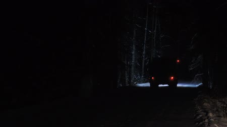 minério : A truck carrying ore rides along a forest snowy road in the winter season. Night time. View from the front window of the car. Vídeos