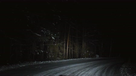полночь : The car moves on a snowy forest road at night. Winter season. View from the front window of the car.