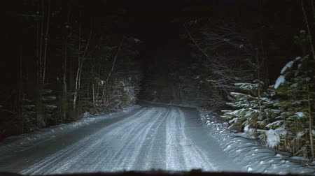 escorregadio : The car moves on a snowy forest road at night. Winter season. View from the front window of the car.