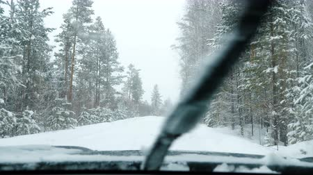 členění : The car stands on a snowy forest road in the snowfall. Winter time. View from the front window of the car. Dostupné videozáznamy