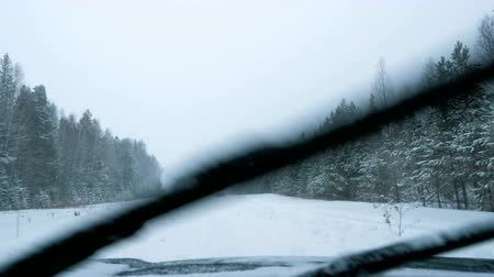 январь : A car is driving along a snowy forest road in a snowfall. Winter time. View from the front window of the car. Стоковые видеозаписи