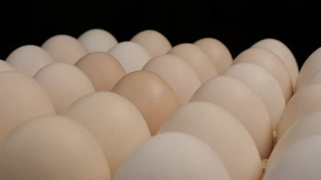 хрупкий : Fresh uncooked large chicken eggs in a paper box rotate on a stand.