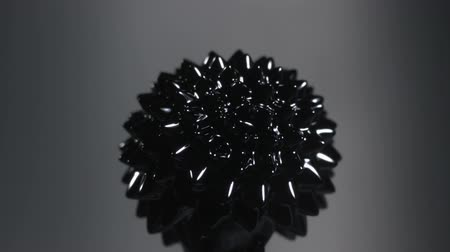 mıknatıs : Ferrofluid on black background shooting with high speed camera. Stok Video