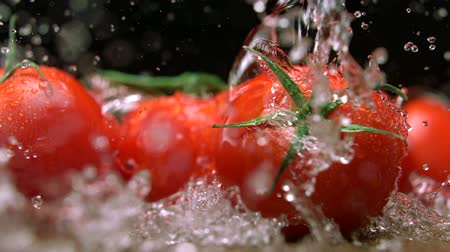раскол : Extreme close-up tomatoes , Slow Motion Стоковые видеозаписи