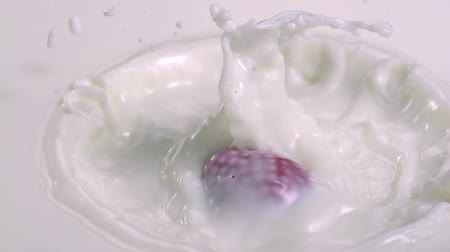 sıçrama : Strawberry falling into milk shooting high speed camera. Stok Video