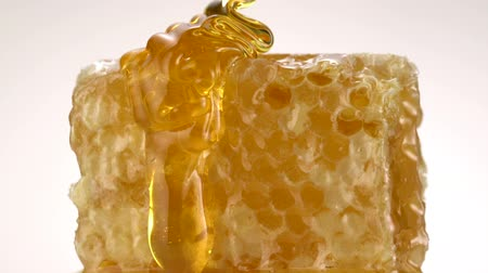 капельный : Honey pouring on honey comb shooting with high speed camera. Стоковые видеозаписи