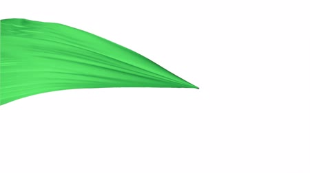 soft : Green fabric flowing in the air on white background shooting with high speed camera, phantom flex. Stock Footage