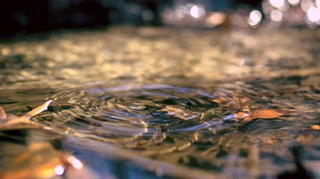 gotas : Water drop making ripple in creek shooting with high speed camera, phantom flex.