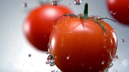 овощи : Water splash on tomato shooting with high speed camera. Стоковые видеозаписи