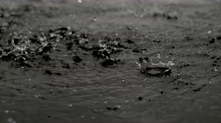 гром : 4K 30fps, Heavy rain in puddle shot with high speed camera, phantom flex 4K.