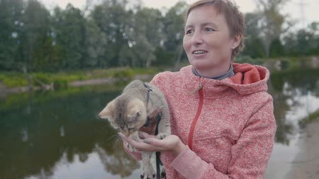 british cat : Happy young Woman shows the British Shorthair Tabby cat near forest river, outdoor Stock Footage