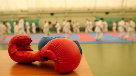 quimono : Red karate gloves on tatami during training, de-focused