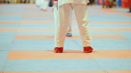 participante : Sports kids - female sportsmen on karate