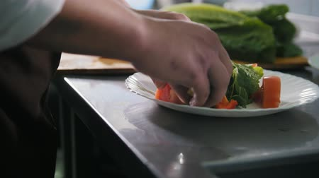 antre : Male chef preparing salad in commercial kitchen Stok Video