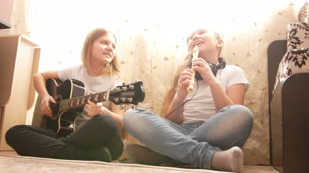 otthonos : Two teenagers sisters playing musical instruments at home