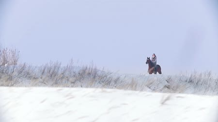 égua : Beautiful longhaired woman riding a brown horse through the deep snowbank in the forst Vídeos