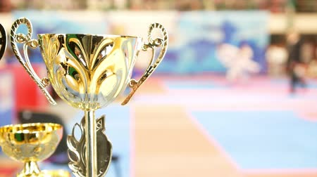 каратэ : Golden cup in front of fighting karate at the tournament