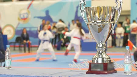 champ : Win cup in front of fighting karate at the tournament