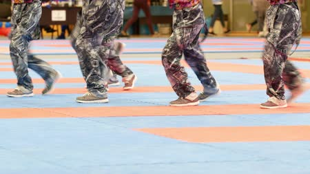 entusiasmo : Teenager dance group at the karate tornament