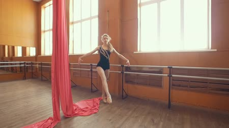 çevik : Graceful young ballerina doing a workout in a studio Stok Video