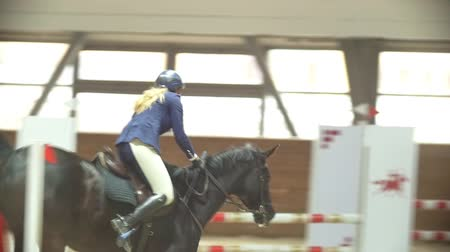 hřebec : Equestrian rider on the stallion jumping throw the barrier at show jumping competition