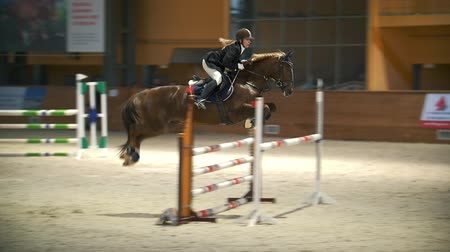 terbiye : KAZAN, RUSSIA - APRIL 25, 2018: Equestrian championship - Young woman on her stallion jumping over the hurdle Stok Video