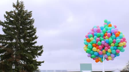 outsider : Multicolored bunch of balloons on the sky background