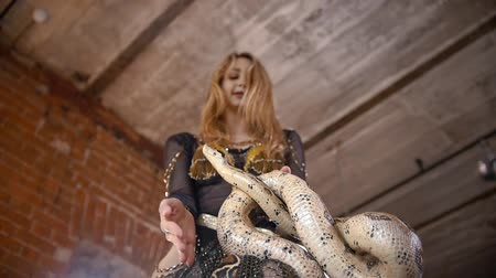 cobra : Attractive female circus actress dancing with python in a studio