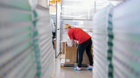 nyomtatás : Female worker puts printed magazines in a box through the paper stacks Stock mozgókép
