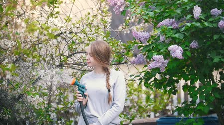 locsolás : Young girl watering cherry on a background of lilac, summer day Stock mozgókép