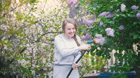 urlop : Young girl watering cherry on a background of lilac, summer day Wideo