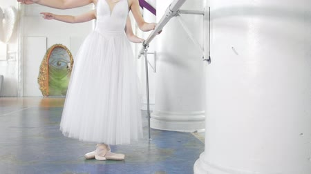тапки : Beautiful young ballerinas on pointe exercises at ballet bar in a studio