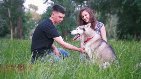 házigazda : Young couple with dogs have a rest outdoors on the grass at summer sunset
