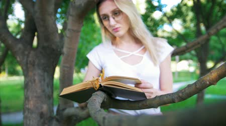 livro : Young woman in eyeglasses eaning on a tree branch and reading a book in the park Vídeos