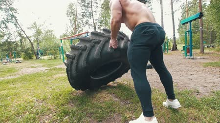üstsüz : Young muscular man doing exercises workout lifting a huge rubber wheel in the forest Stok Video
