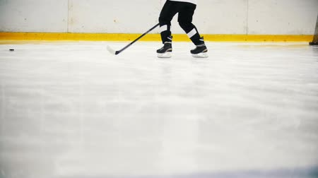 hokej : Hockey players are training on the ice before the match. View of legs Wideo