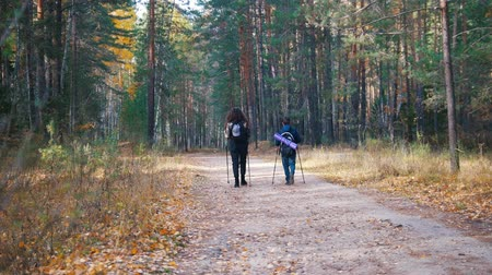 платформа : Young woman and a boy on scandinavian walk in the forest. Back view