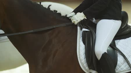 korkuluk : The girl jockey is sitting on a brown riding horse in uniform and white gloves